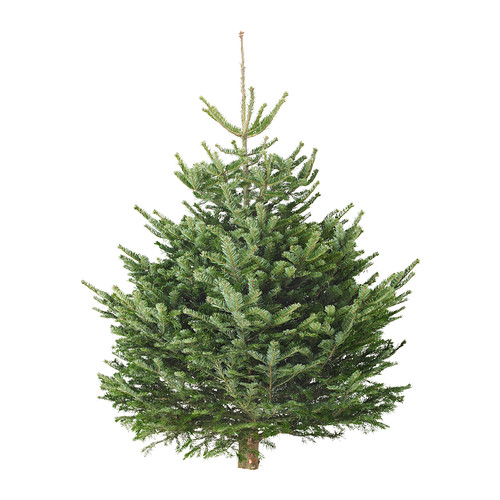 Ikea Christmas trees